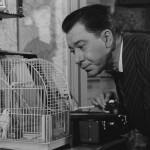 Du mouron pour les petits oiseaux - Blu-ray