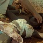 L'État sauvage - Blu-ray