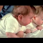 Fleur d'oseille - Blu-ray