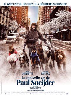 La Nouvelle vie de Paul Sneijder - Affiche