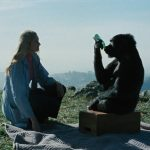Koko, le gorille qui parle de Barbet Schroeder - Coffret Carlotta