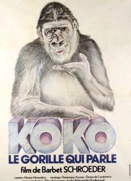 Koko, le gorille qui parle - Affiche