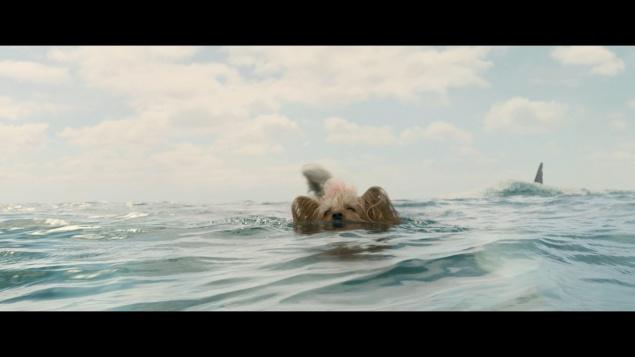 En eaux troubles (2018) de Jon Turteltaub – Capture Blu-ray