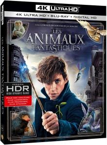 Les Animaux fantastiques (2016) de David Yates - Packshot Blu-ray 4K Ultra HD