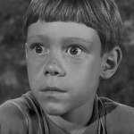 The Twilight Zone - S3 : C'est une belle vie
