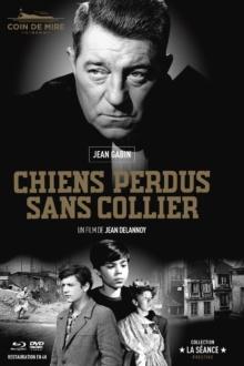 Chiens perdus sans collier (1955) de Jean Delannoy - Digibook - Blu-ray + DVD + Livret – Packshot Blu-ray