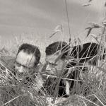 Les Evadés - Capture Blu-ray