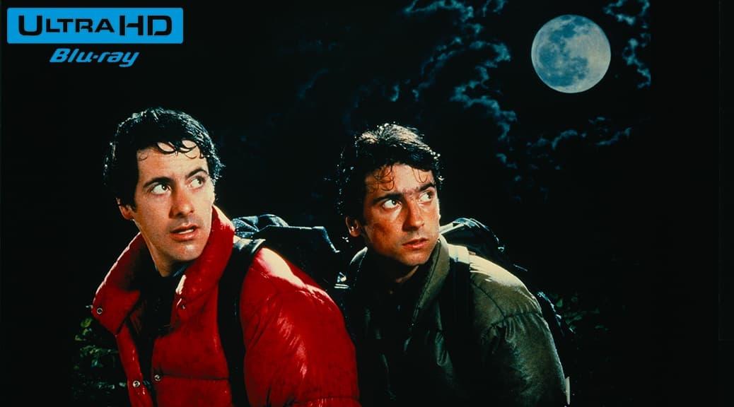 Le Loup-garou de Londres (1981) de John Landis – Blu-ray 4K Ultra HD